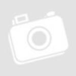 Gombos Zoltán divattervező gyerekkori divatrajzai